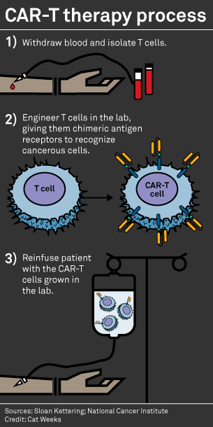 Sorrento Car T Cell Therapy Showed Positive Effects In Phase 1b Cancer Trial S P Global Market Intelligence